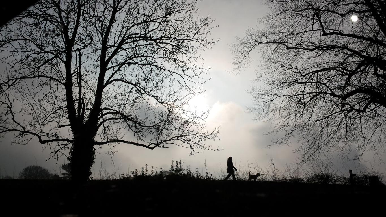 Lichfield dog walker (003)